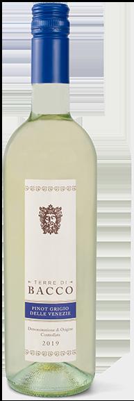 Pinot Grigio delle Venezie DOC - Terre di Bacco full
