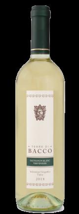 Sauvignon-Blanc-Trevenezie