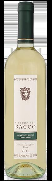 Sauvignon Blanc Trevenezie - Terre di Bacco full